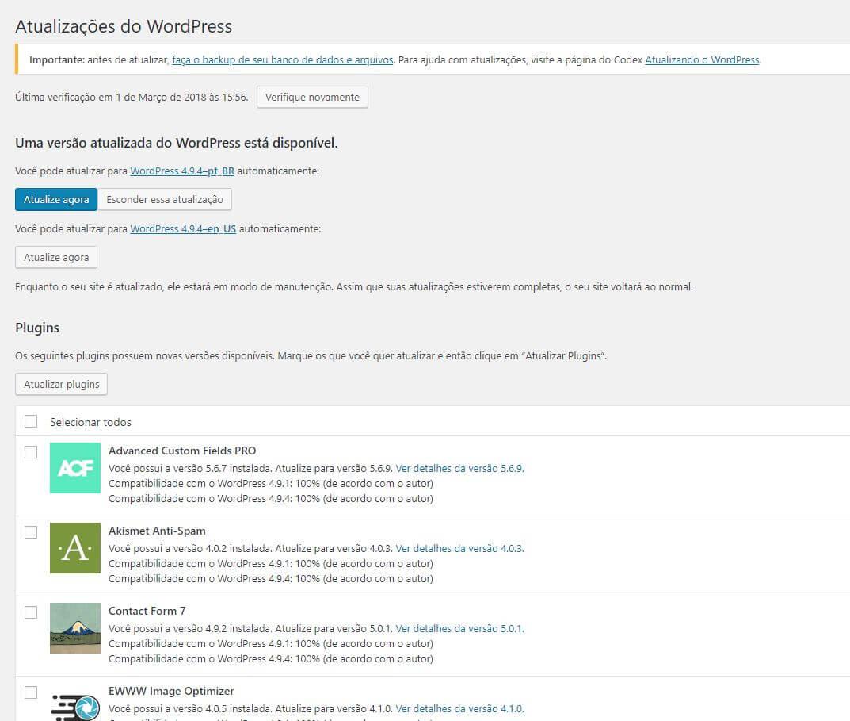 Tela para atualizar o WordPress e seus plugins